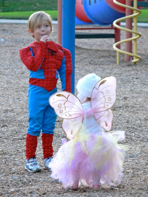 spiderman and fairy chatting